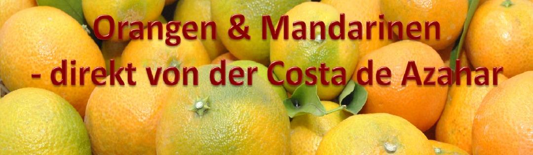 Mandarinen aus Spanien
